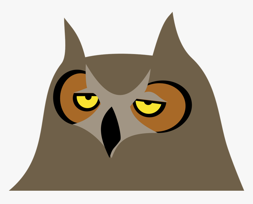 Bored Owl Clipart, HD Png Download, Free Download