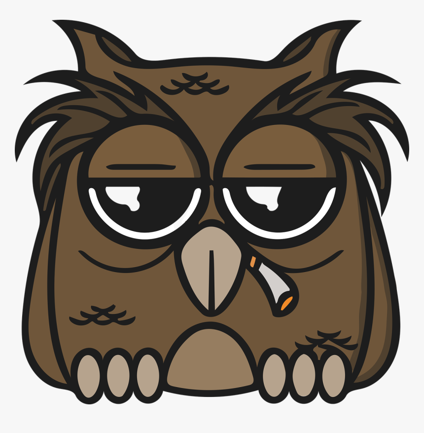 Transparent Owl Face Png - Owl Weed, Png Download, Free Download