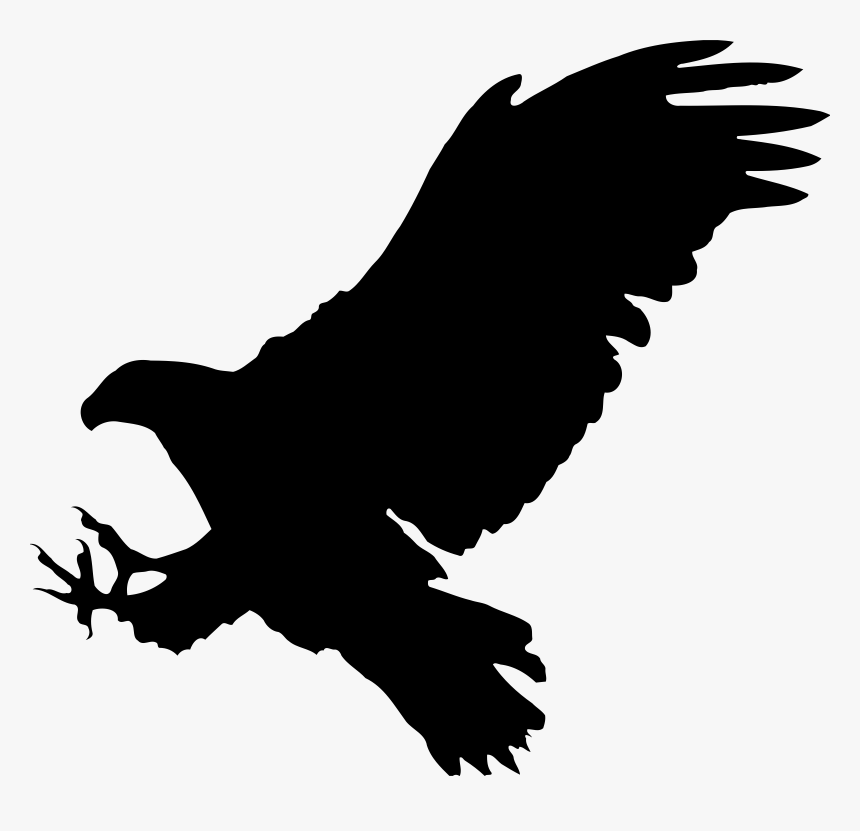 Eagle 9 Silhouette Icons Png Bird Of Prey Clipart Transparent Png Kindpng