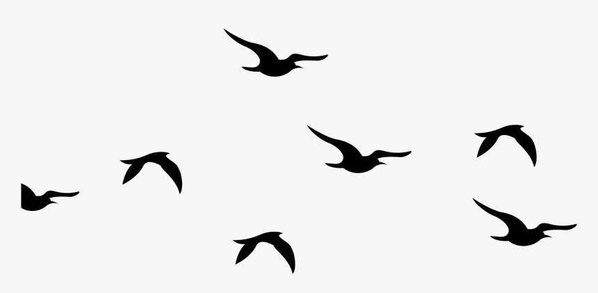 Bird Flock Png - Silhouette Birds Clipart Black And White, Transparent Png, Free Download