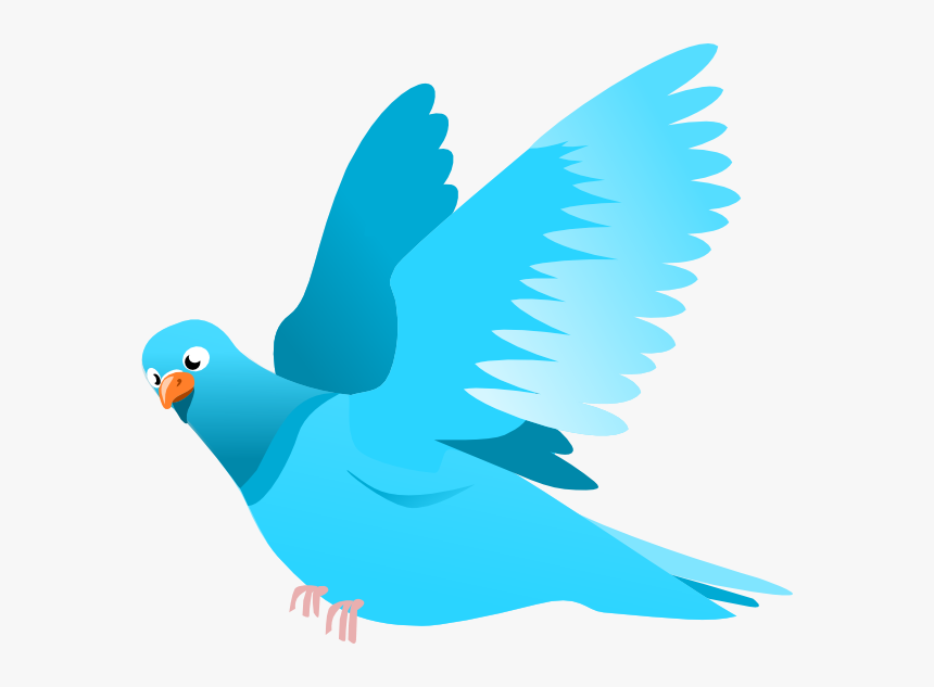 Transparent Flying Bird Silhouette Png - Bird Flying Clipart Png, Png Download, Free Download