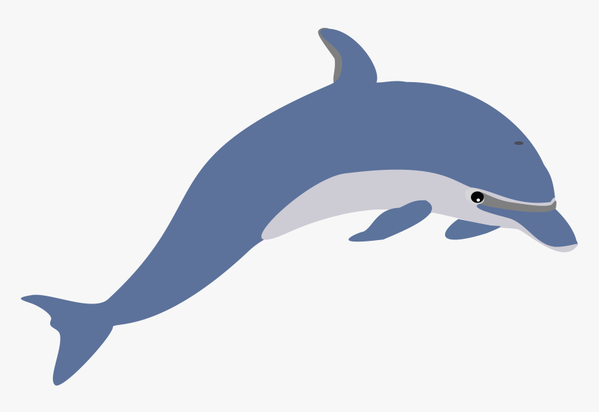Clip Art Facts For Kids And - Transparent Background Dolphin Clip Art, HD Png Download, Free Download