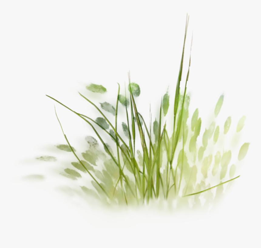 #landscapearchitecture Tree Plan, Landscape Architecture - Grass Sketch Png, Transparent Png, Free Download