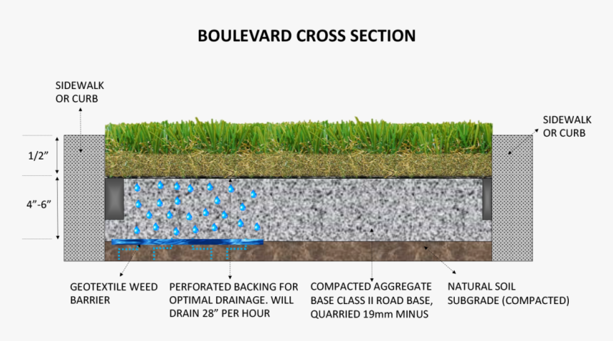 Boulevard Well Cross Section The Art Of Synthetic Turf - Turf Grass Section, HD Png Download, Free Download