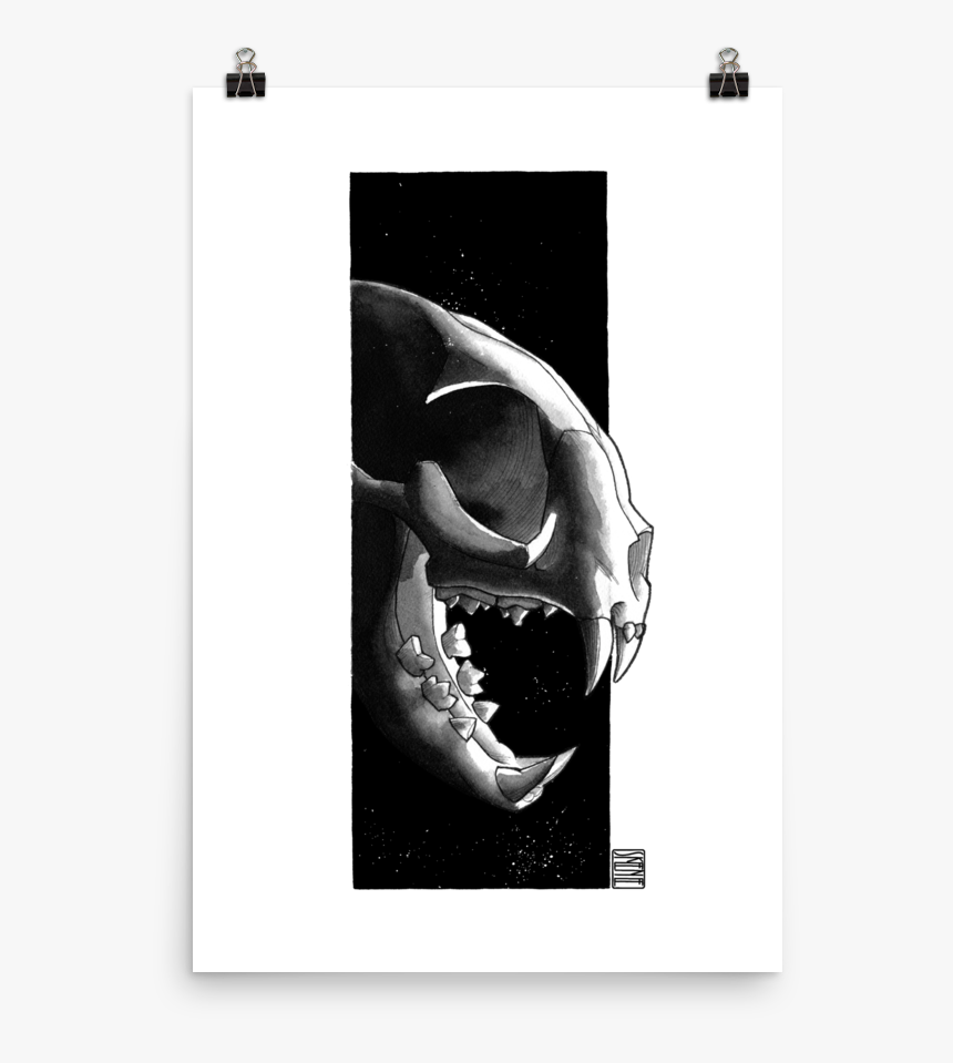 Cat Skull, Black & White - Skull, HD Png Download, Free Download