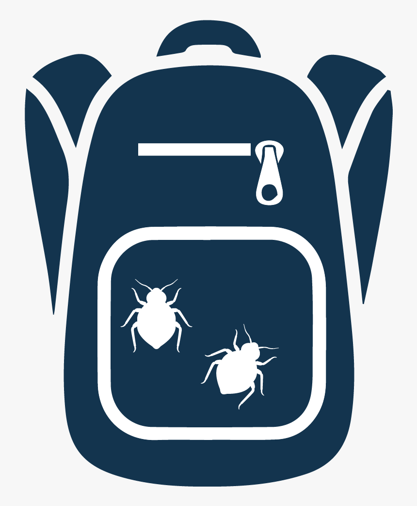 Bed Bugs Are Infesting Schools And Then Are Being Brought, HD Png Download, Free Download