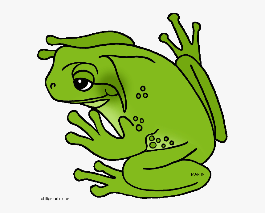 Green Frog Clipart Cool Frog - Green Tree Frog Clipart, HD Png Download, Free Download