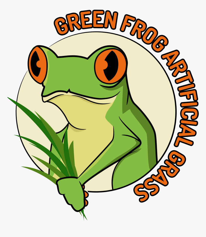 Red-eyed Tree Frog, HD Png Download, Free Download