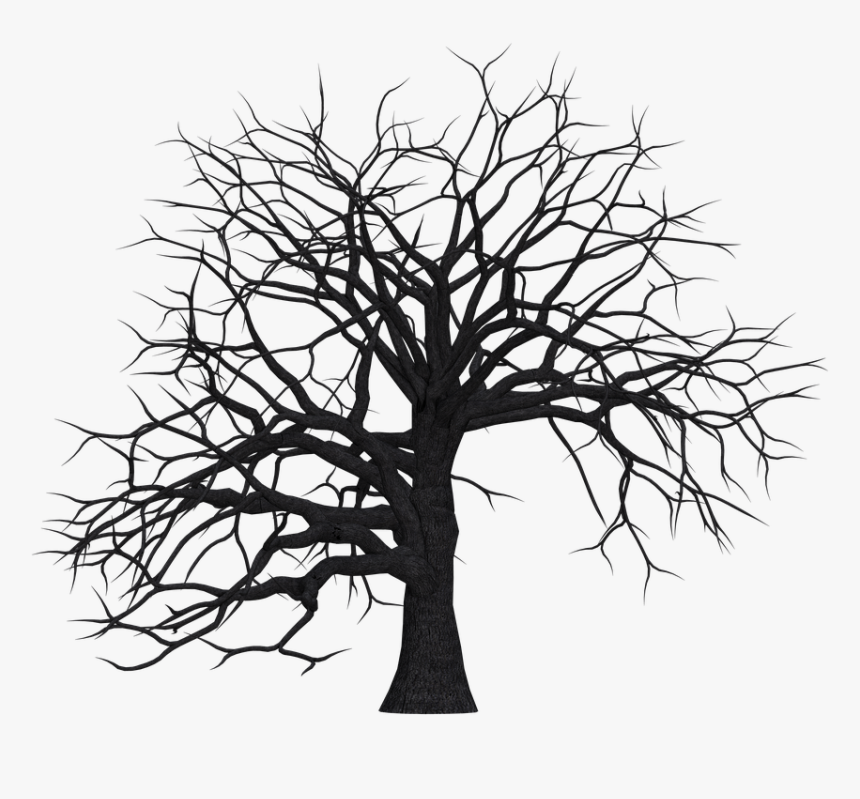 Tree, Digital Art, Isolated, Without Leaves, Leafless - Dead Trees Clip Art, HD Png Download, Free Download