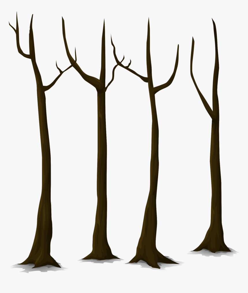 Trees Without Leaves Clipart, HD Png Download, Free Download