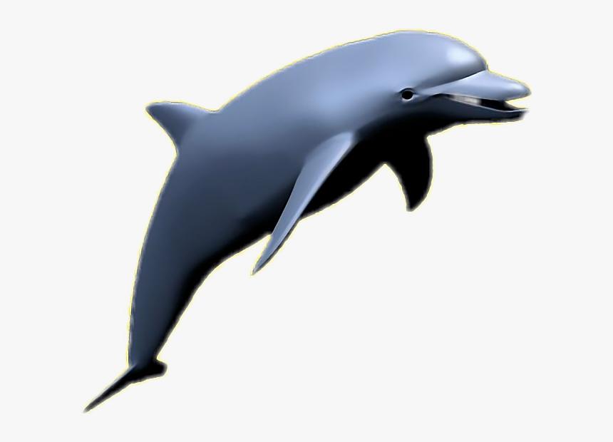 Transparent Vaporwave Dolphin Png - Aesthetic Transparent Dolphin Png, Png Download, Free Download