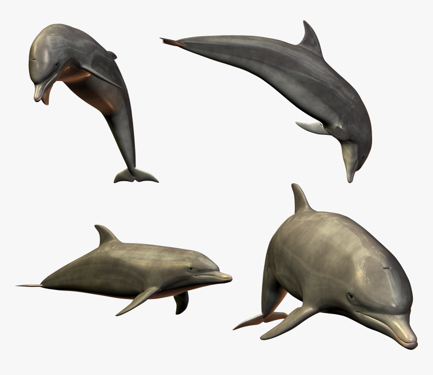 Dolphin Clipart Diving Dolphin - Dolphin Transparent Jumping, HD Png Download, Free Download