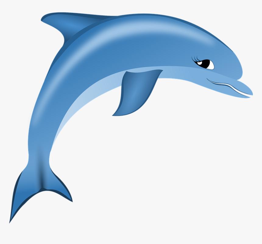Dolphin,bottlenose Dolphin,short Beaked Common Dolphin,common - Dolphin Logo Png, Transparent Png, Free Download
