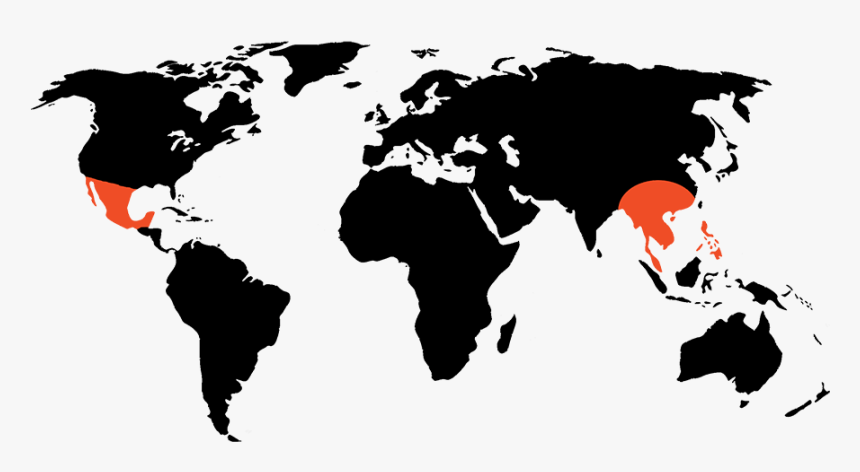 Project Ak-47 Active Regions Around The World - Simple World Map Outline Png, Transparent Png, Free Download