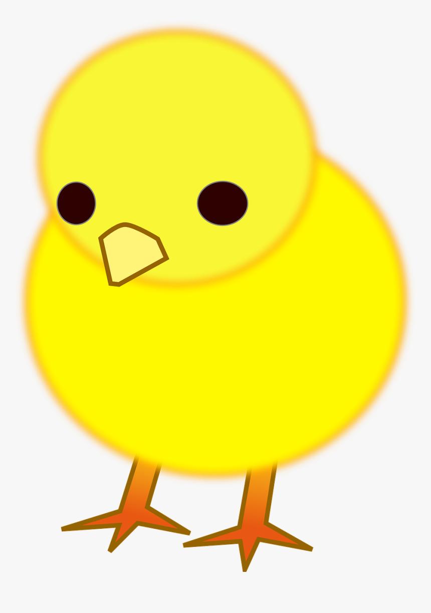 Gambar Anak Ayam Kartun Lucu HD Download Kindpng