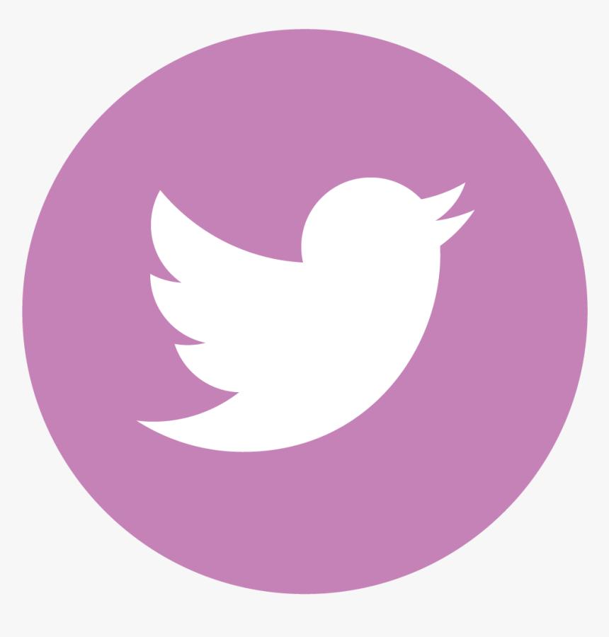 Facebook Twitter Instagram Pinterest - Gris Redes Sociales Icono Png, Transparent Png, Free Download