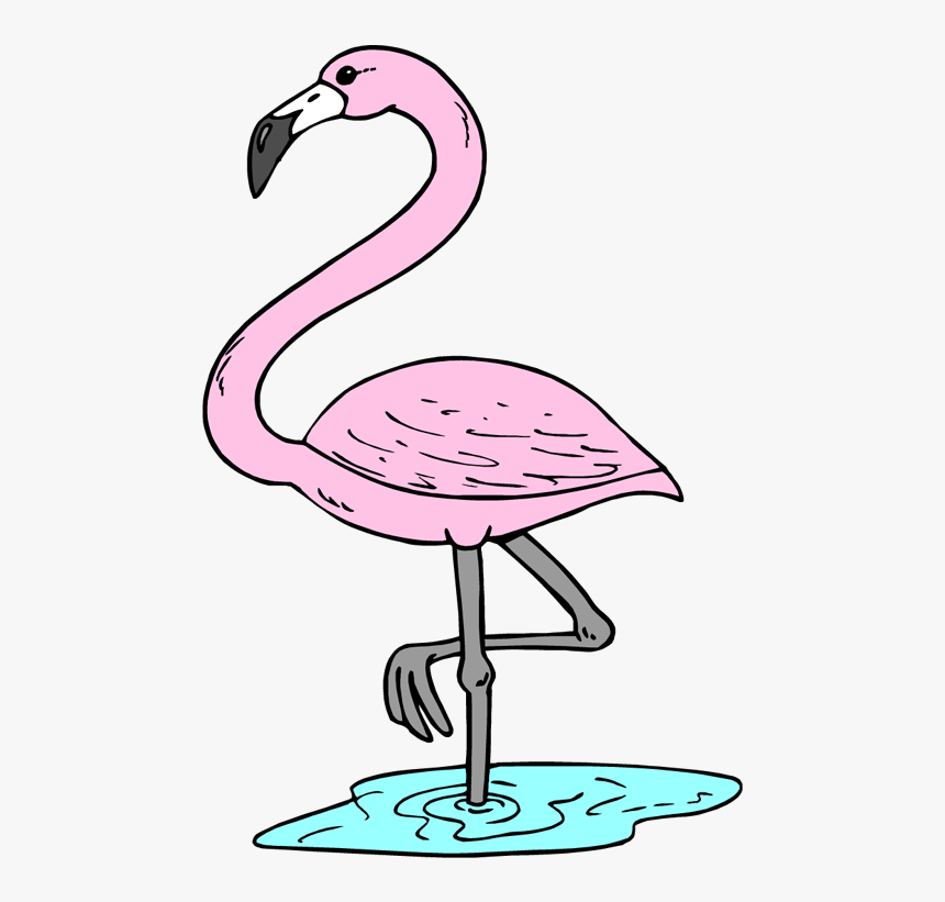 Clipart Flamingo Many Interesting Cliparts - Tropical Flamingo Flamingo Clipart, HD Png Download, Free Download