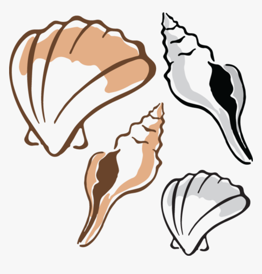 Clam Clipart - Clam Cliparts, HD Png Download, Free Download