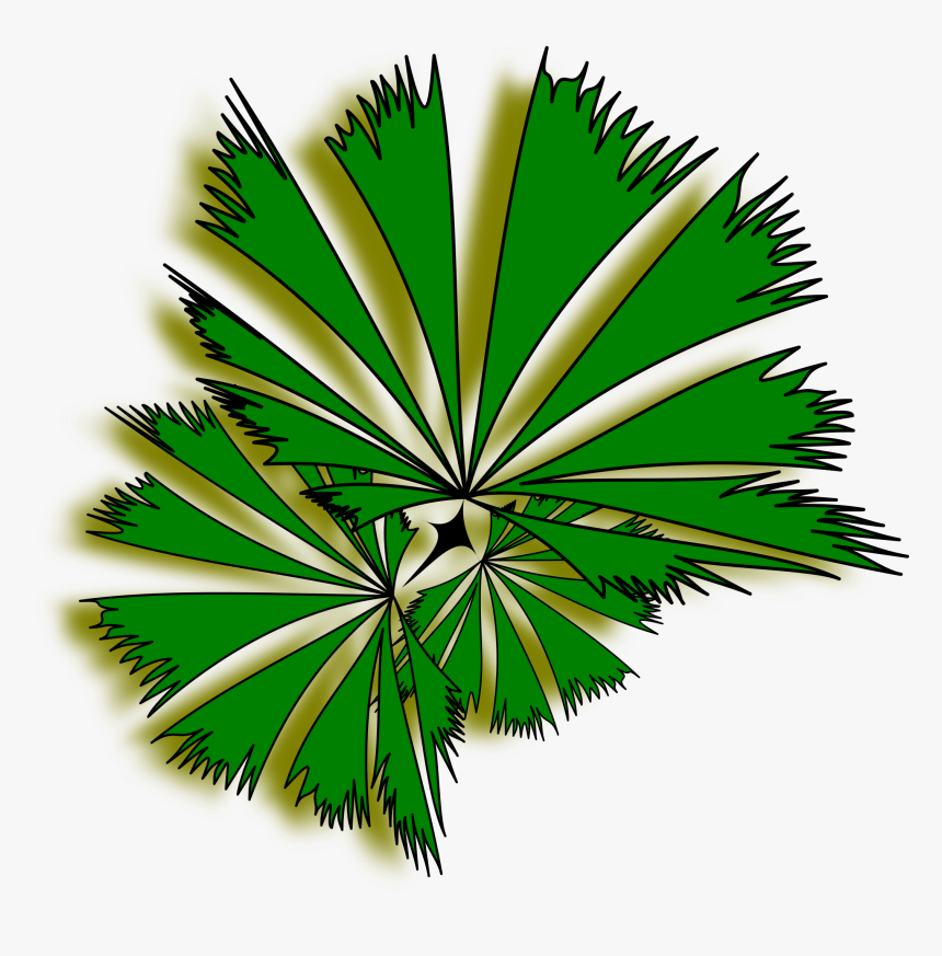 Palm Tree Clipart Top - Top View Tree Png, Transparent Png, Free Download