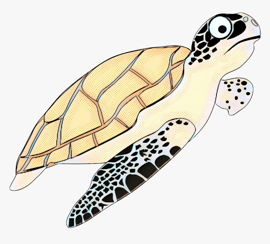 Turtle Vector Png - Hawksbill Sea Turtle Cartoon, Transparent Png, Free Download