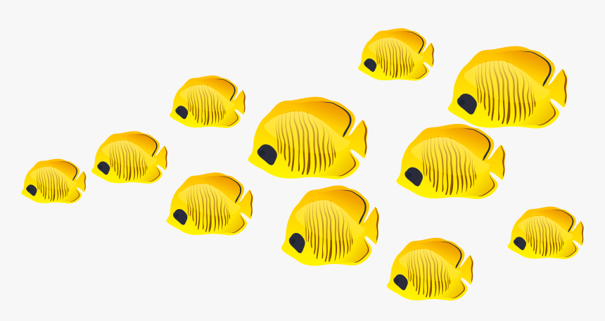 Fish Clip Art - No Background Fish Clipart, HD Png Download, Free Download