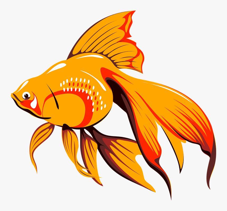 Fish Gif Png Transparent Png Kindpng