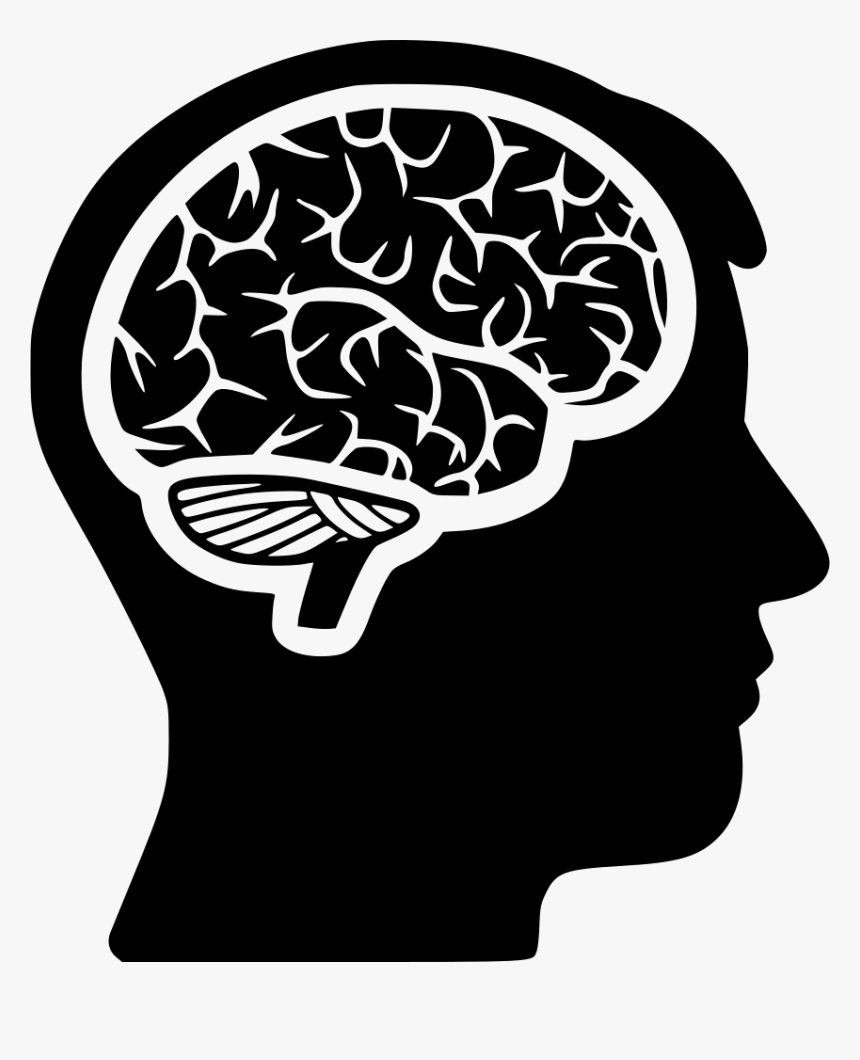 Head And Brain Png - Head With Brain Png, Transparent Png, Free Download