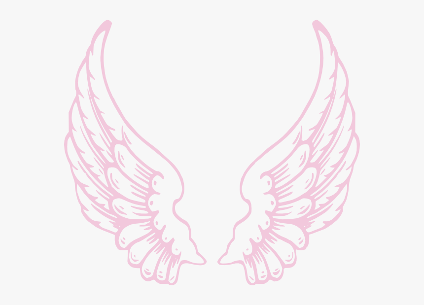 Pink Angel Wings Png, Transparent Png, Free Download