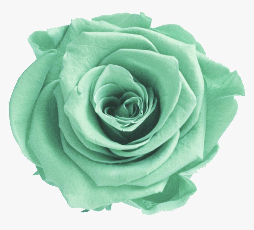Mint Transparent Flower Crown - Transparent Green Flowers Png, Png Download, Free Download
