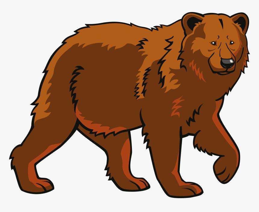polar bear eurasian brown bear clip art - bear clipart, hd png download -  kindpng  kindpng