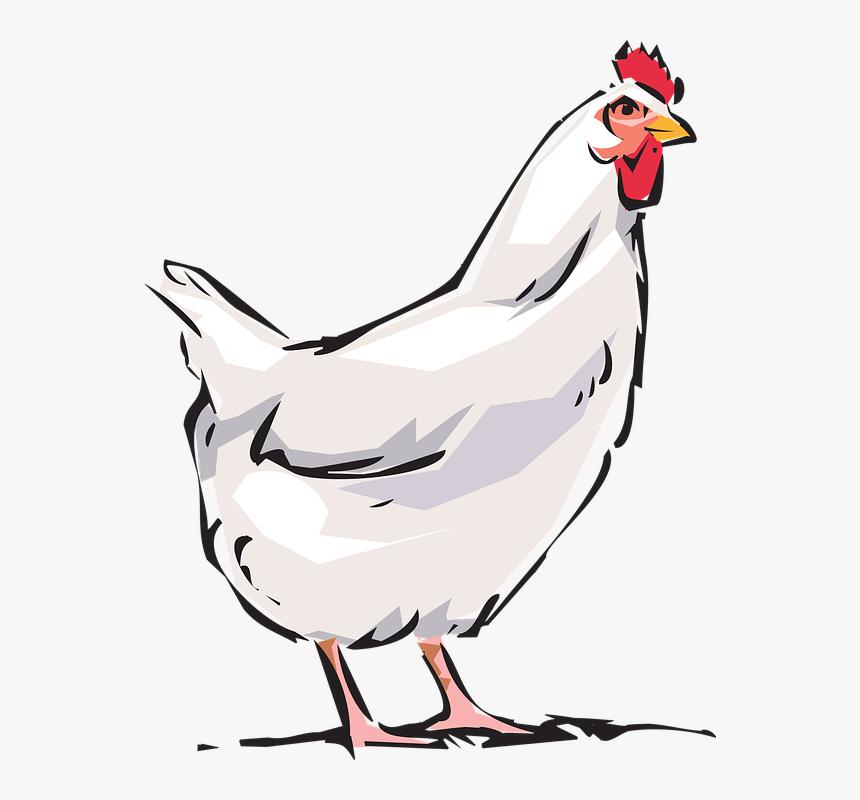 chicken clipart
