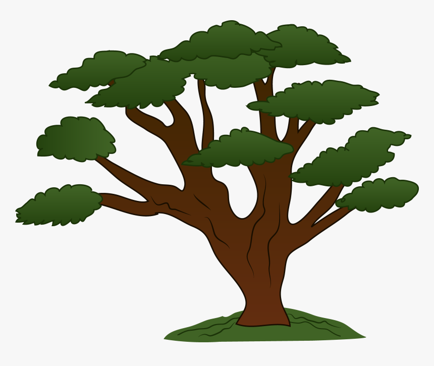 Trees Family Tree Clipart Free Clipart Images Cliparting Big Trees Clip Art Hd Png Download Kindpng