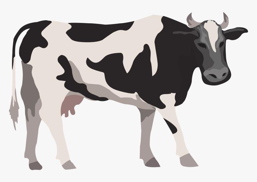 Cattle Livestock Farm Illustration Cow Vector Png Hd Transparent Png Kindpng