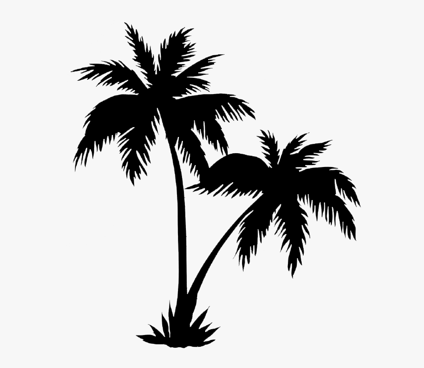 Palm Trees Png Black - Realistic Palm Tree Drawings, Transparent Png, Free Download