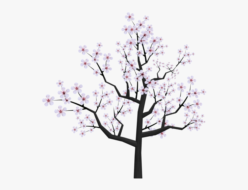 27+ Outline Cherry Blossom Tree Silhouette Background