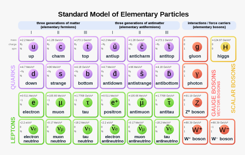 Standard Model Of Particle Physics, HD Png Download, Free Download