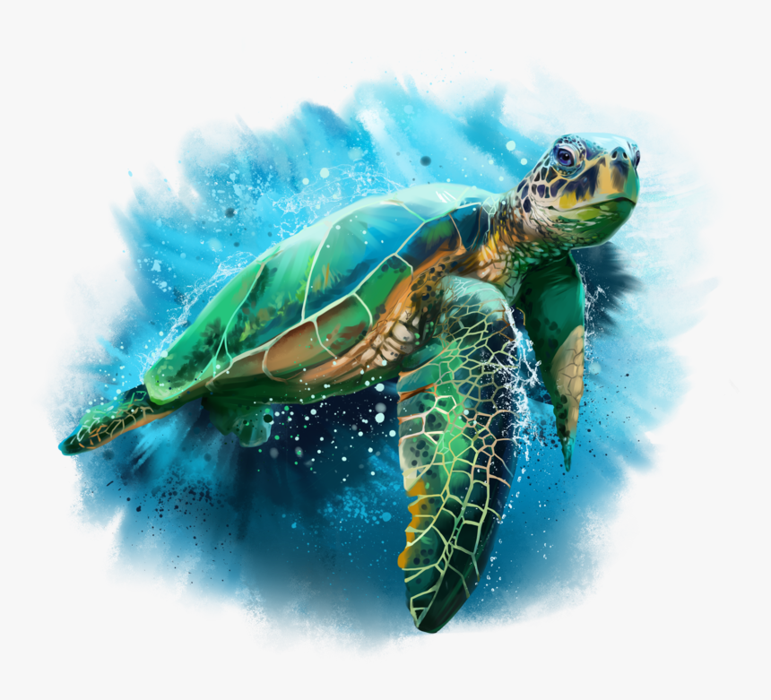 Transparent Sea Png - Sea Turtle Watercolor, Png Download, Free Download