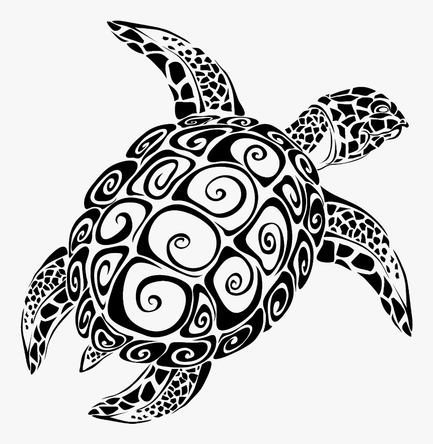 Sea Turtle Vector Graphics The Turtle Image - Sea Turtle Svg File, HD Png Download, Free Download