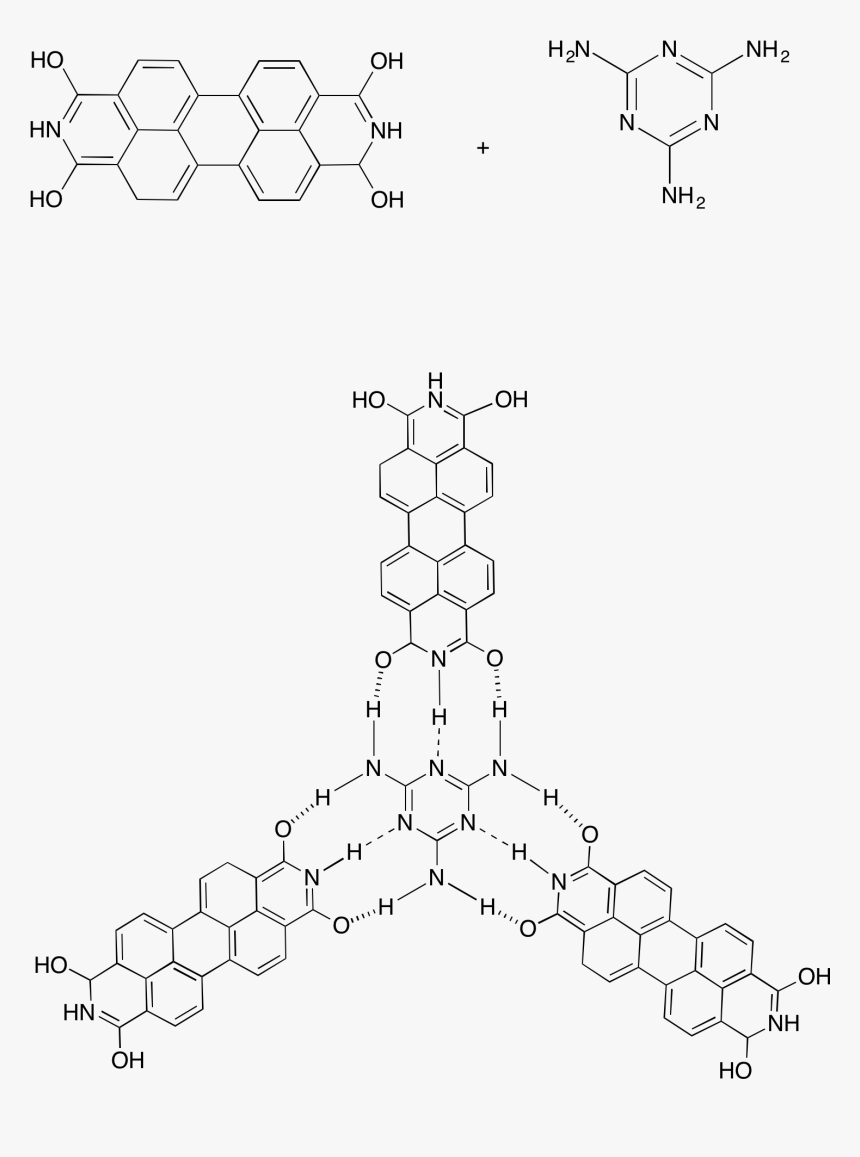 Self-assembly Of A Ptcdi Melamine Supramolecular Network - Steroid Structure And Triterpene, HD Png Download, Free Download