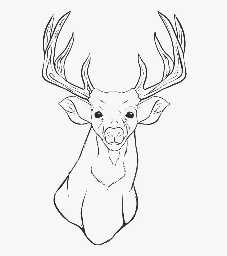 Deer Head Coloring Pages - Printable Deer Head Coloring Pages, HD Png Download, Free Download