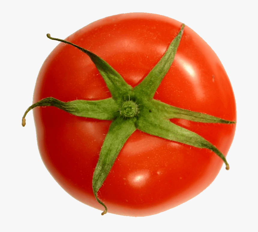 Transparent Tomato Png - Top Of A Tomato, Png Download, Free Download
