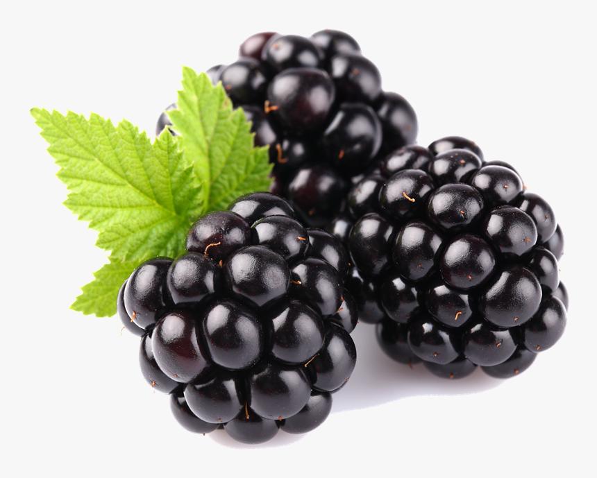 Blackberry Fruit Free Download Png - Fruits Blackberry, Transparent Png, Free Download