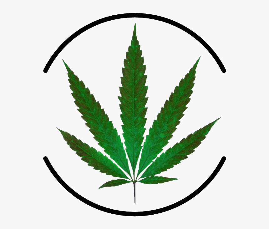 Картинки скачать марихуану марихуана влияние на зрение