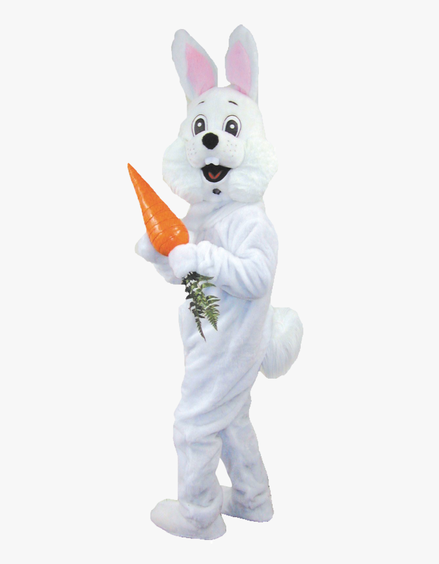 Real Easter Bunny Png - Easter Bunny Costume Png, Transparent Png, Free Download
