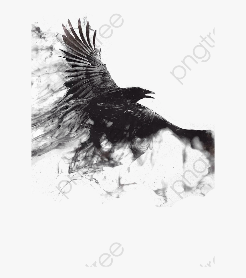 Transparent Crow Png Crow Wallpaper Android Png Download Kindpng