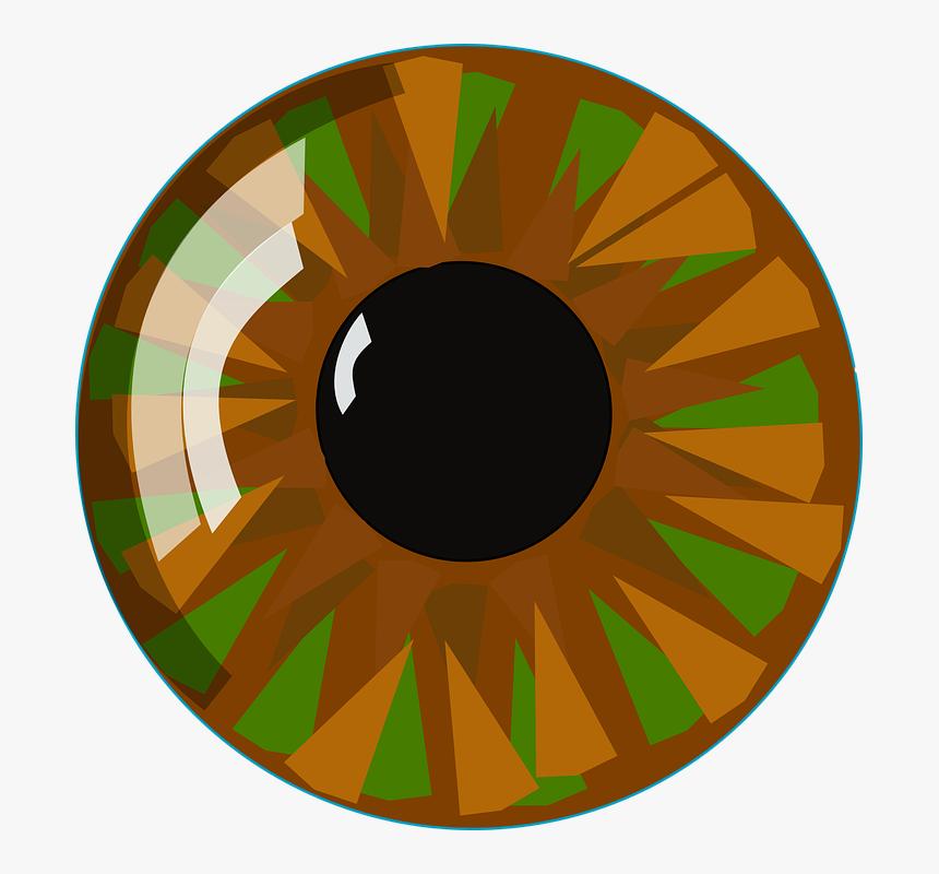 Eyeball Eye Vision Human Look See View Closeup Clip Art Hazel Eyes Hd Png Download Kindpng