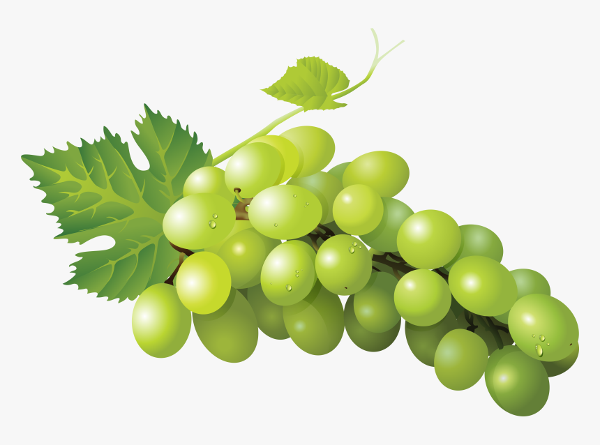 Sultana Grape Zante Currant Seedless Fruit Sauvignon - Green Grape Png, Transparent Png, Free Download