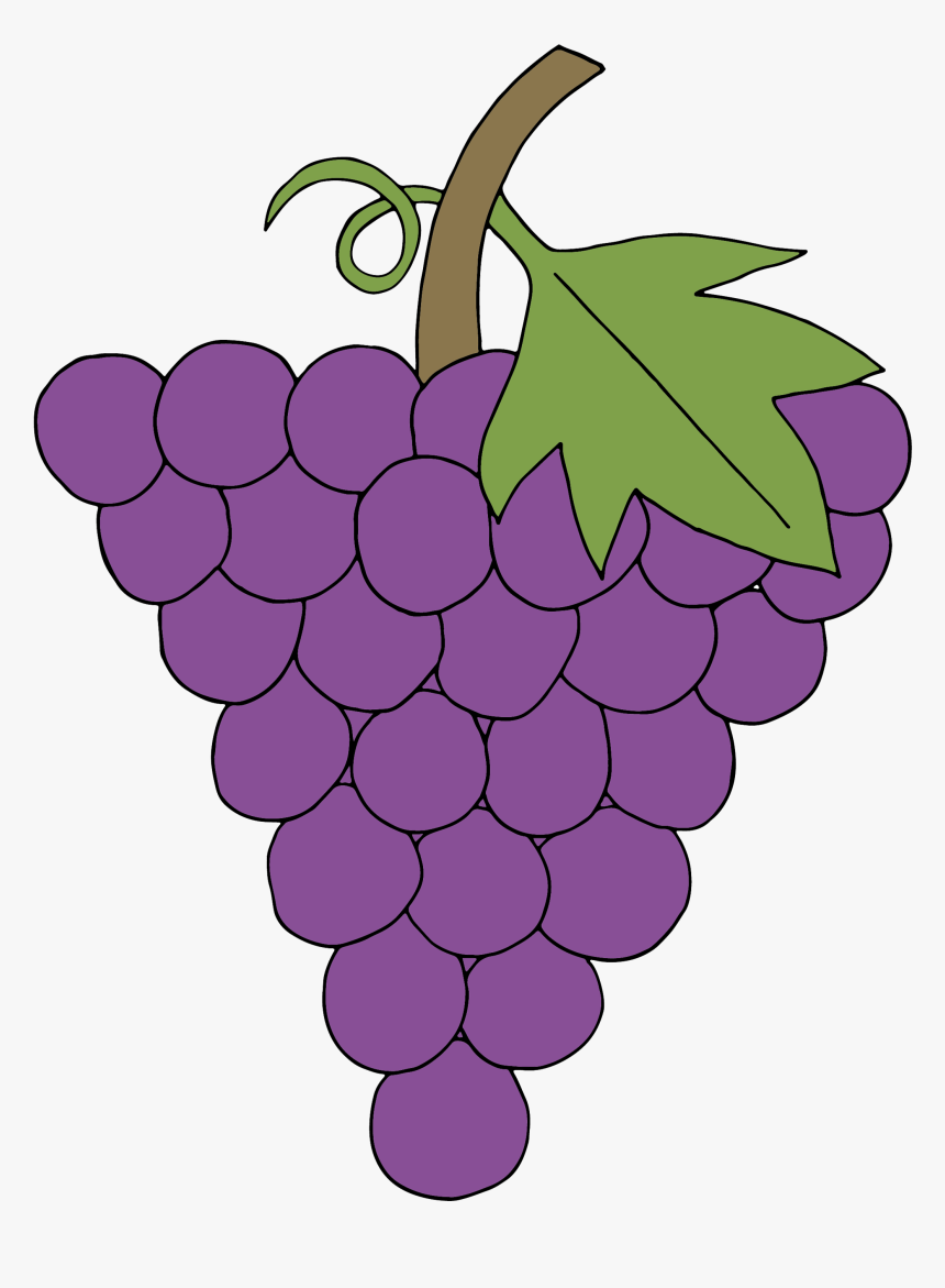 Transparent Grape Clipart - Grape, HD Png Download, Free Download