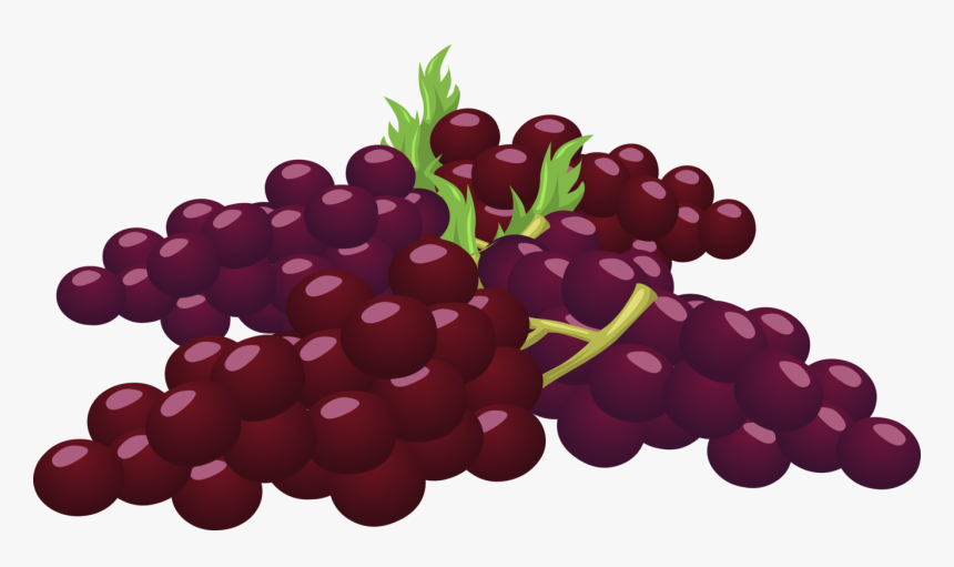 Seedless Fruit,grape Seed Extract,grape - Cluster Of Grapes Clipart, HD Png Download, Free Download