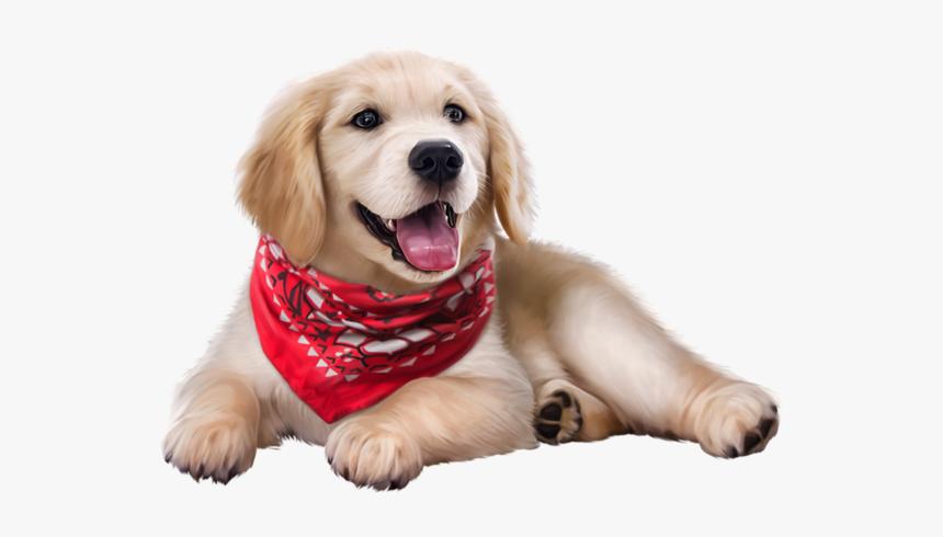 Dog Bandana Png, Transparent Png, Free Download